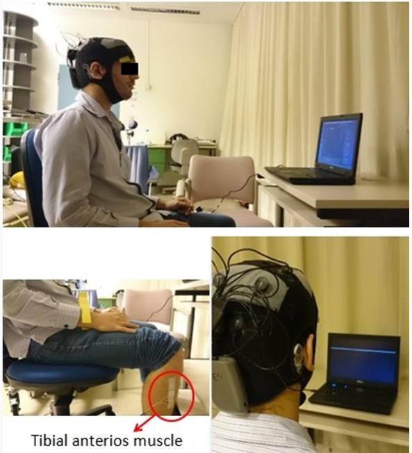 Research   NeuroPhys4NeuroRehab