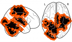 Spatial tolerance in the case of fMRI data: Expanding weight maps by 6 voxels (12 mm). The black-colored voxels represent the initial non zero weights of the reference map. The red-colored voxels are the δ-dilation of the previous map where δ = 6 voxels.