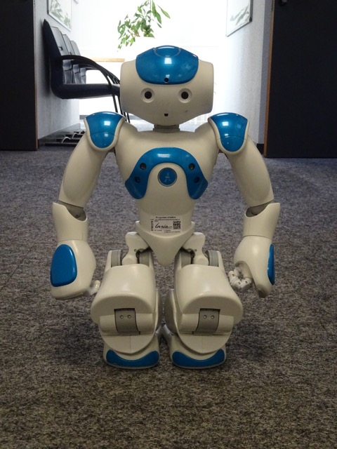 The Companion Robot NAO |