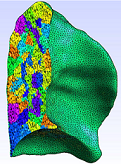 Cut of a simulation mesh